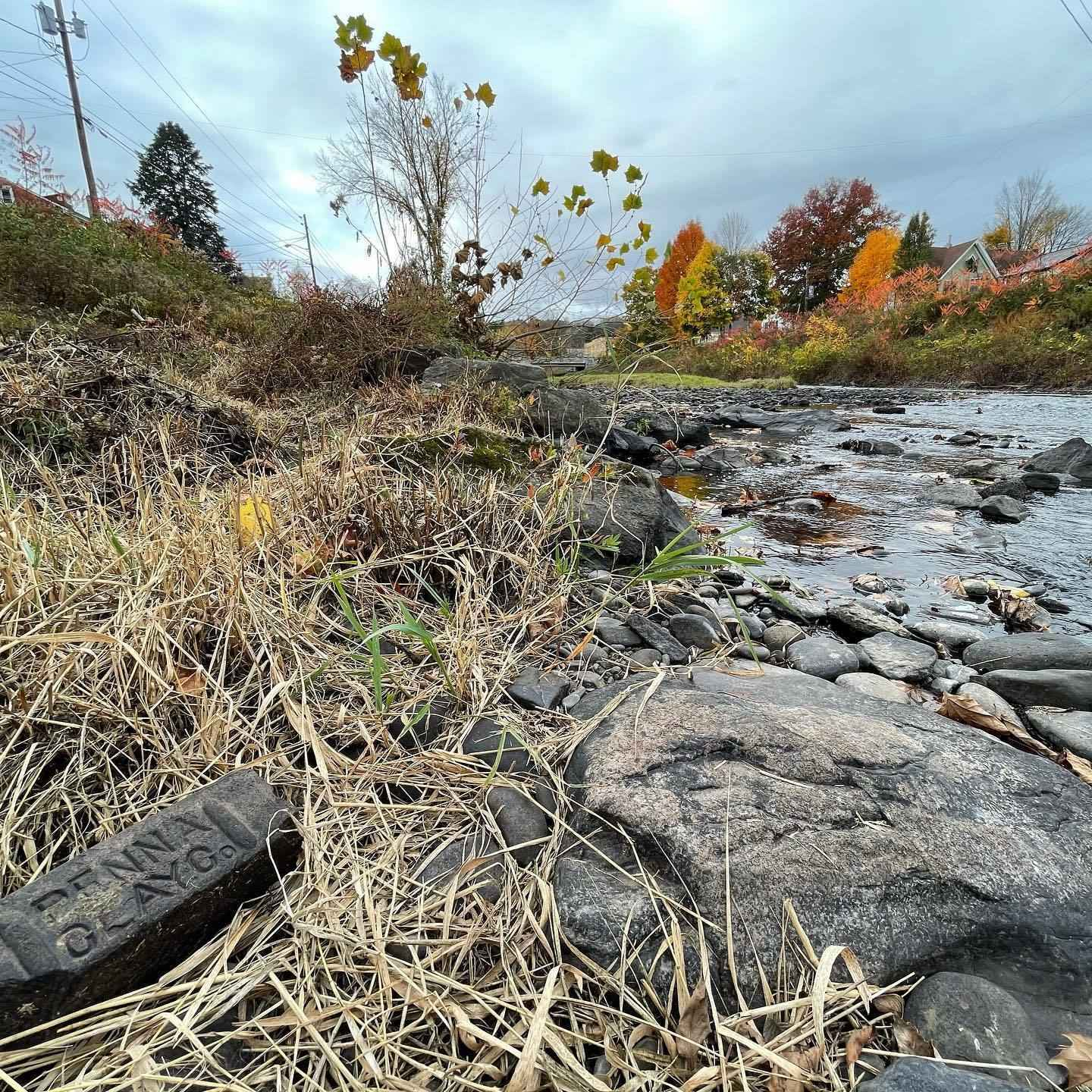 Support the Lackawaxen River Trails! image