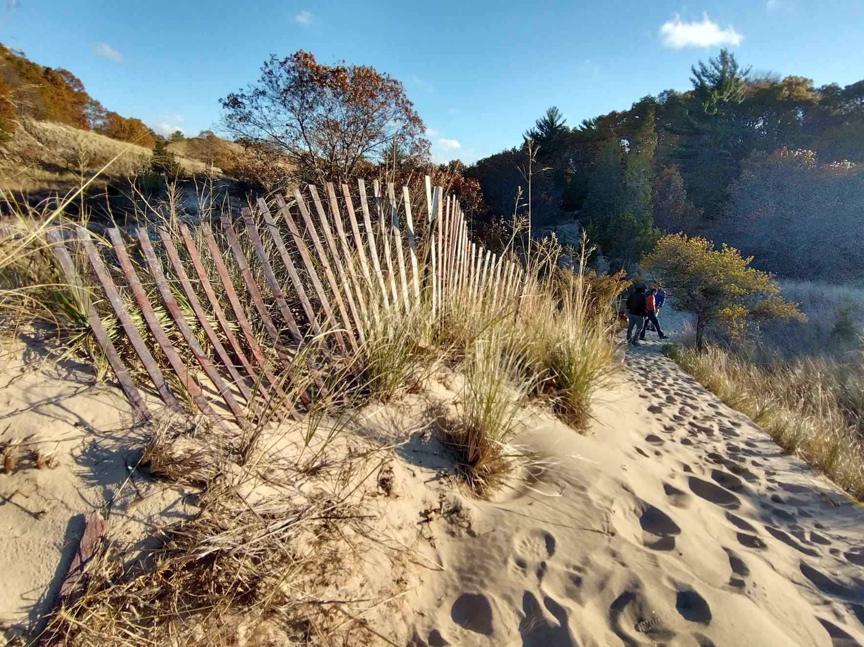 Make a gift today to support the Indiana Dunes & Lake Michigan! image