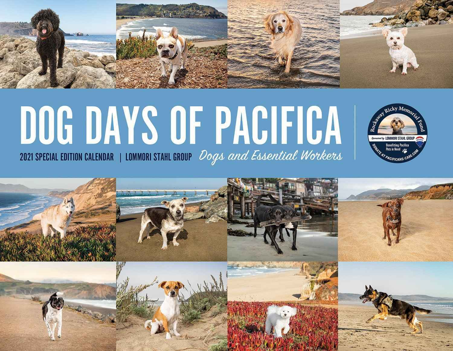 Supporting Pacifica's Neighbors in Need image