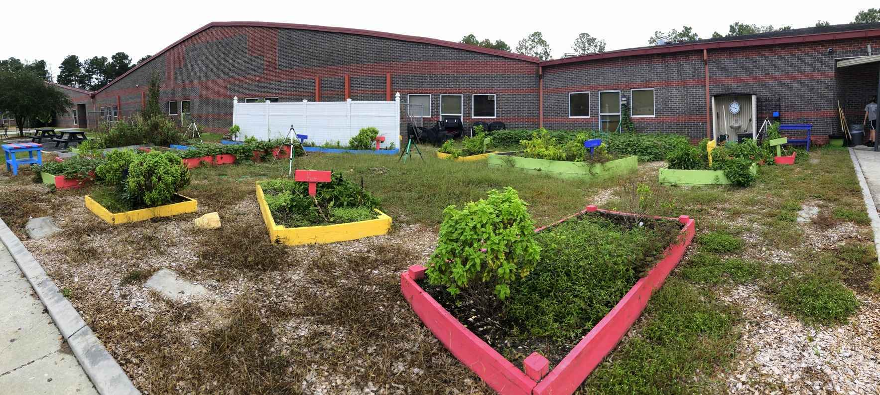 Our Katie's Krops Growers at DuBose Need Our Help to Rebuild Their Garden! image