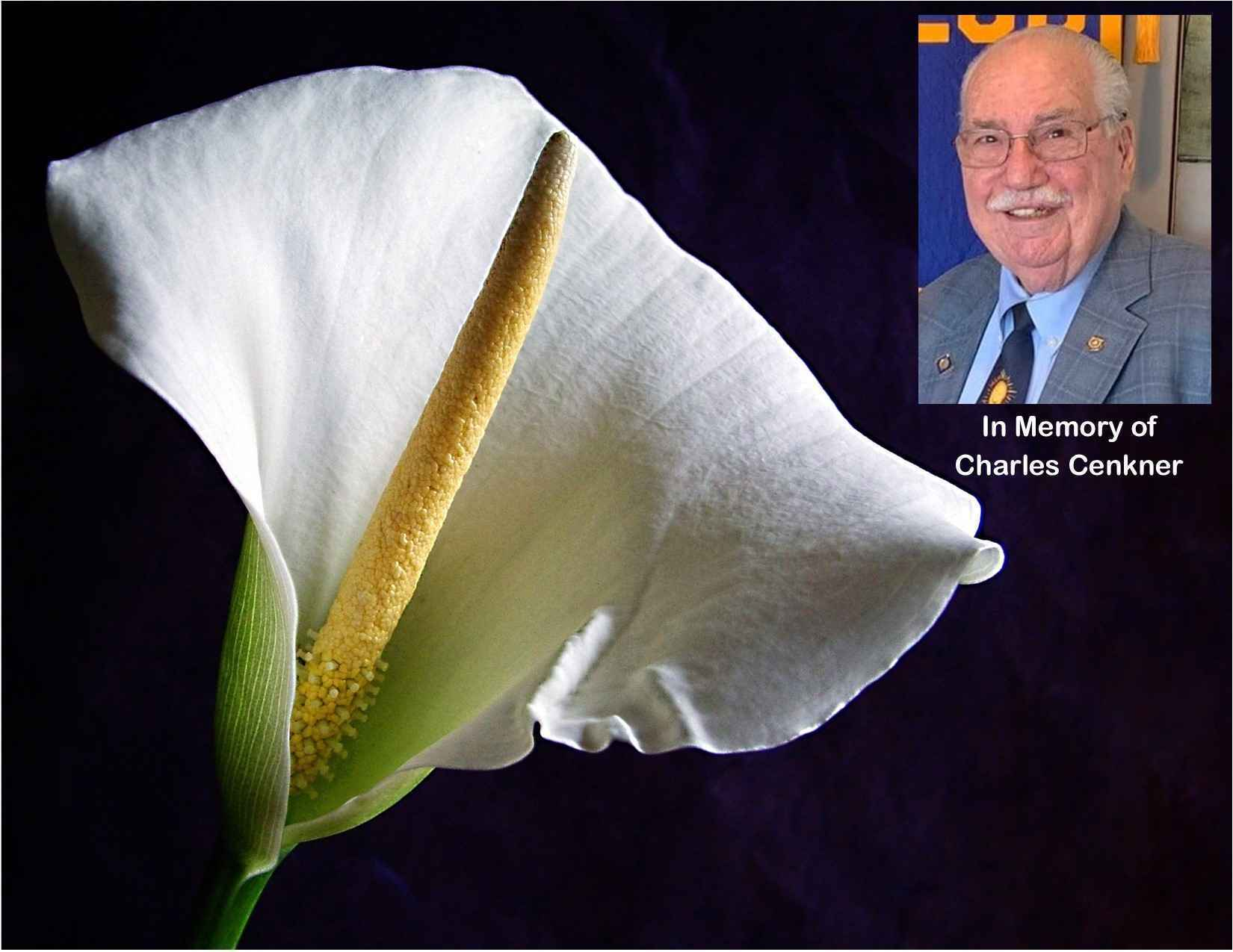 Remember the Life and Legacy of Charles Cenkner image