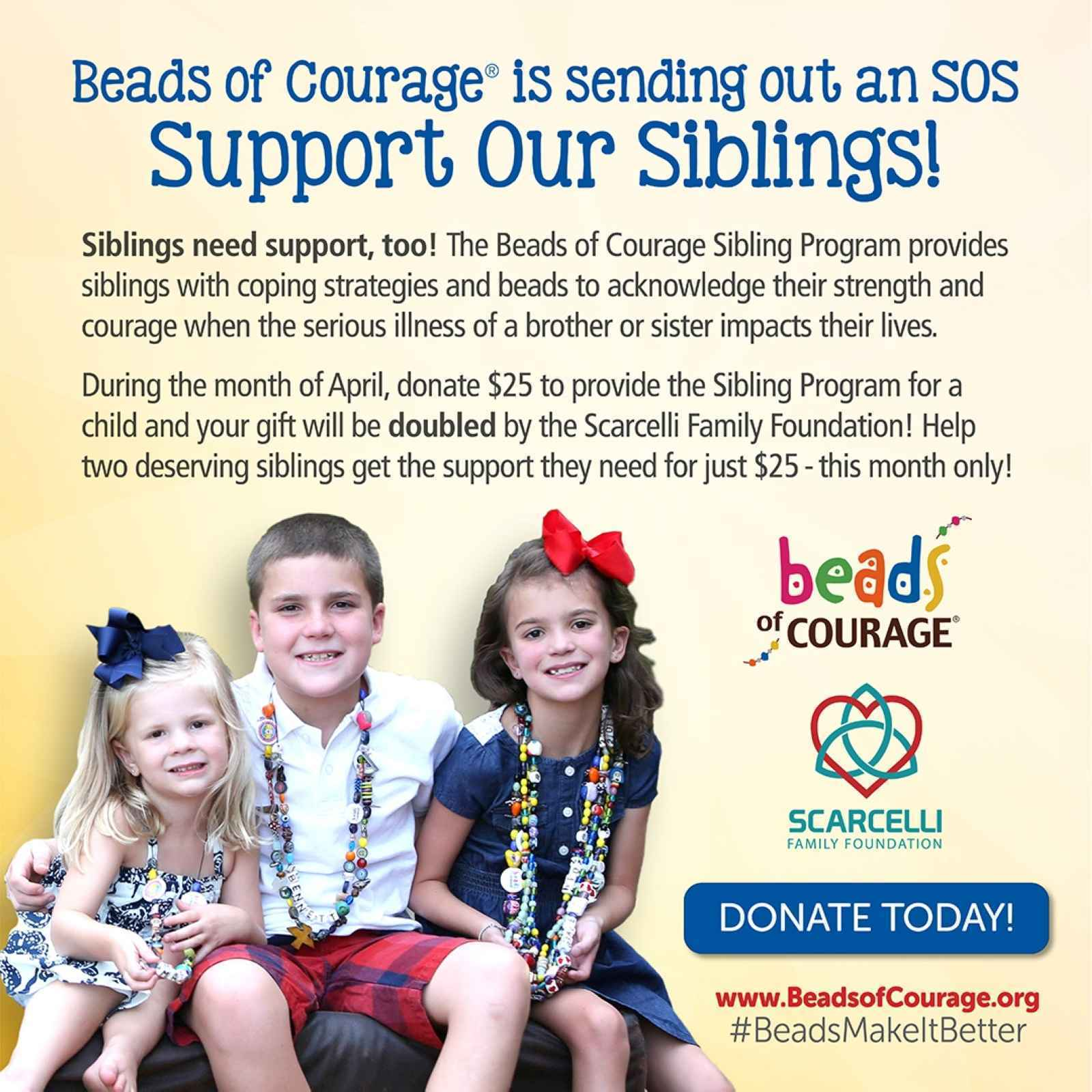 S.O.S! Siblings need support, too! image