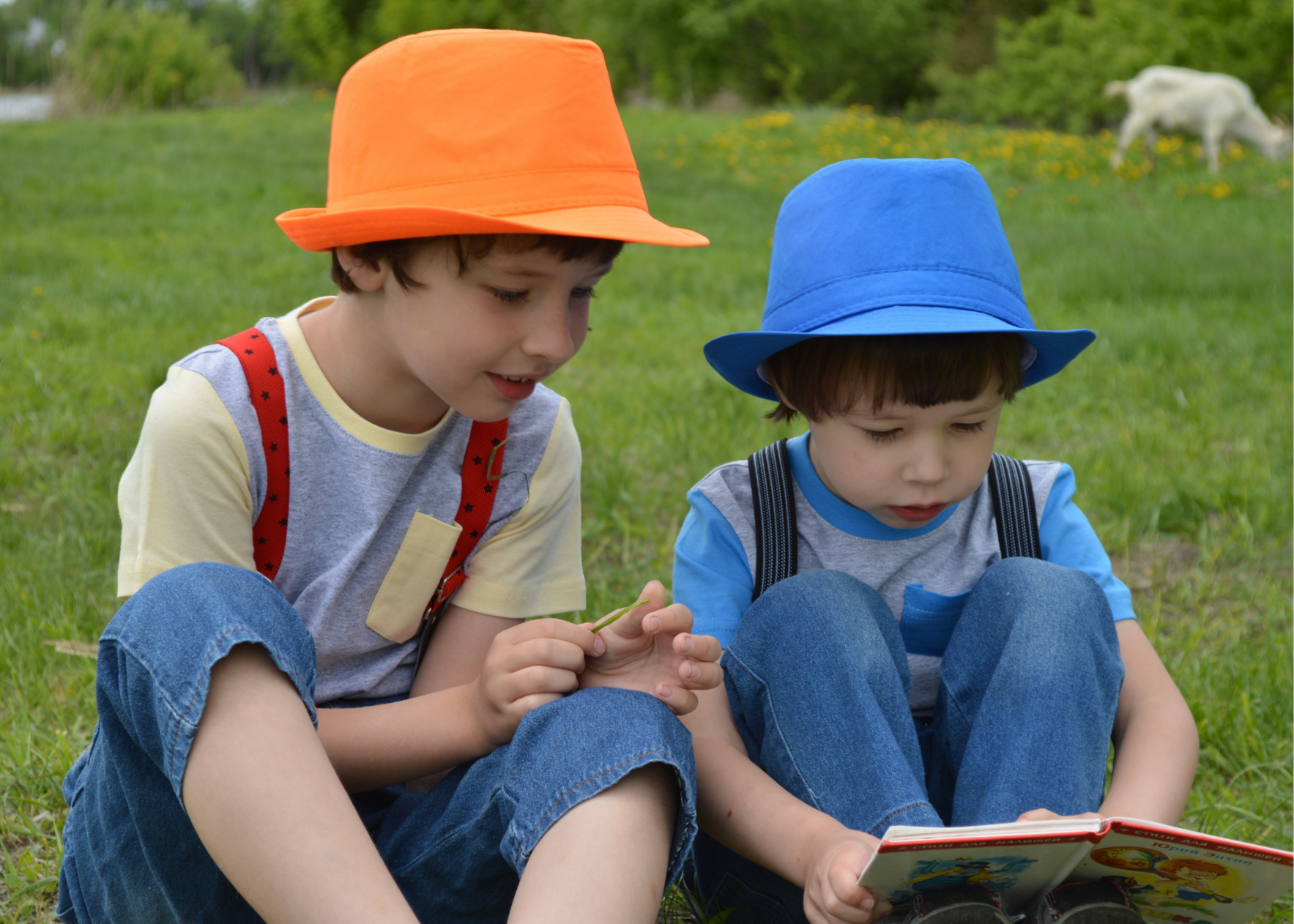 Support the Love of Reading in Children image