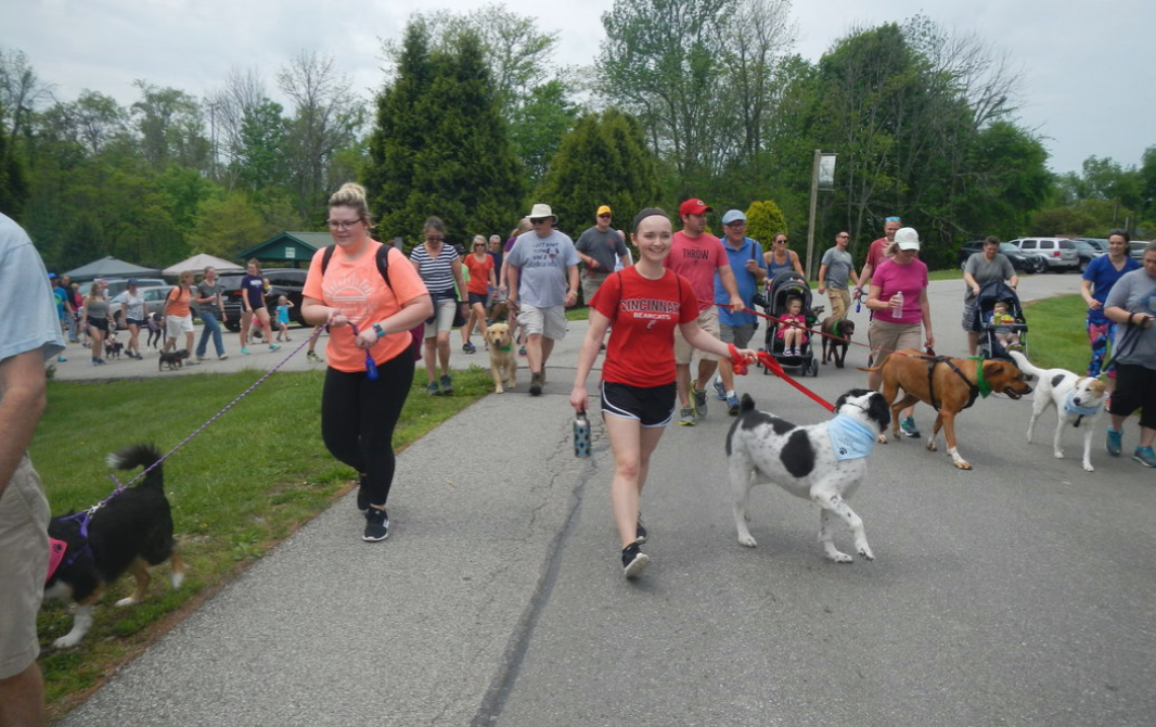 2021 NKY Dog Walkathon image