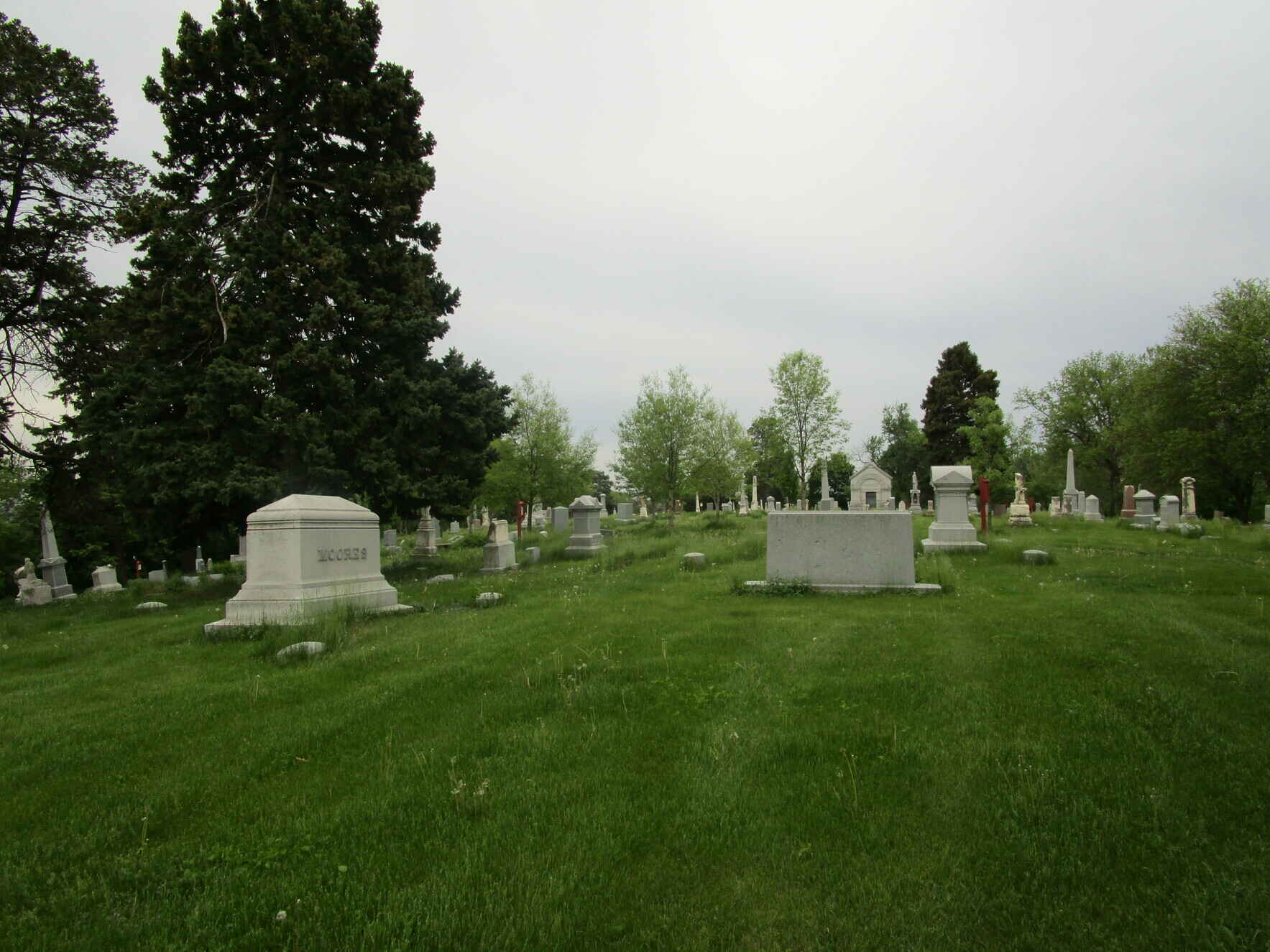 Help us maintain and upgrade the landscape at Prospect Hill Cemetery image