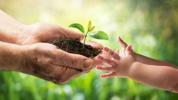Let's plant Trees! image