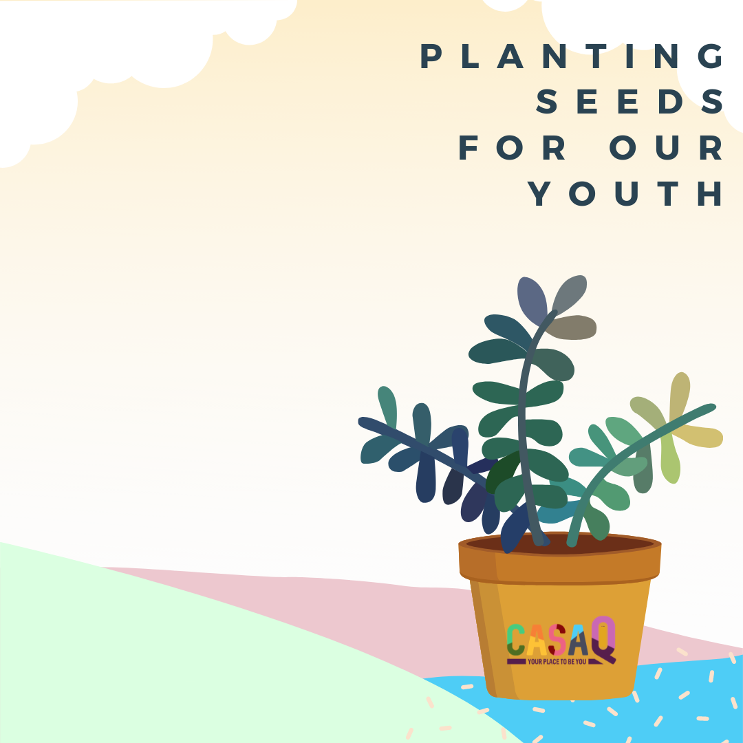 Your gift ensures Casa Q can plant seeds for a brighter future for our youth. image