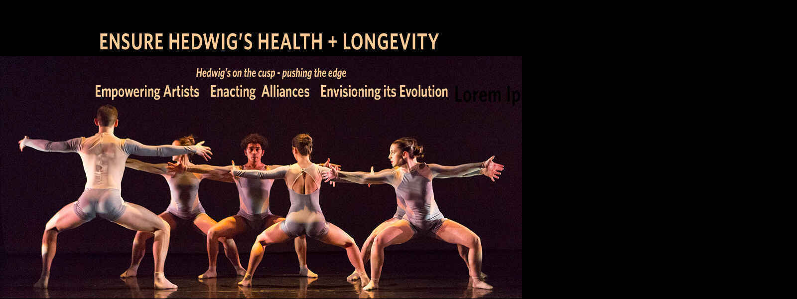 Empowering Artists  -  Enacting Alliances -  Envisioning its Evolution image