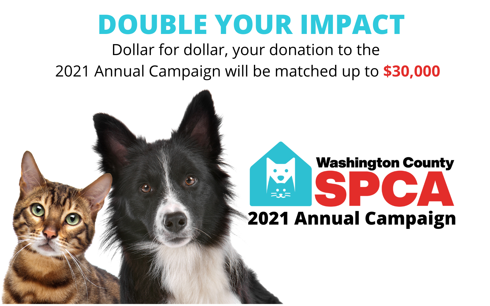 Double your impact! Dollar for dollar, your donation will be matched up to $30,000 total. image
