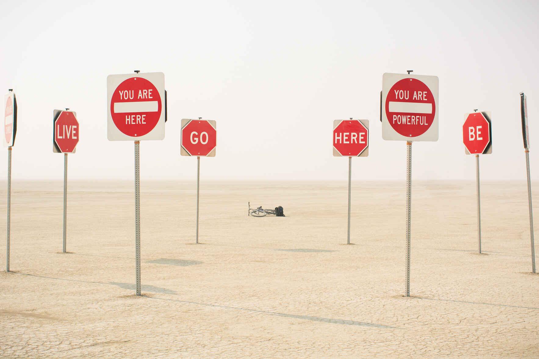 Dan Bradner Burning Man Prints image