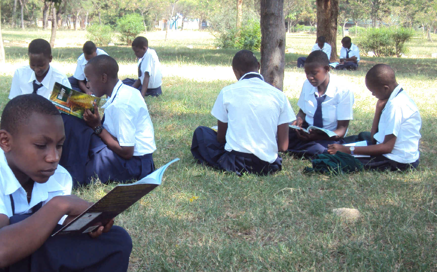 Support Our Work in Tanzania image