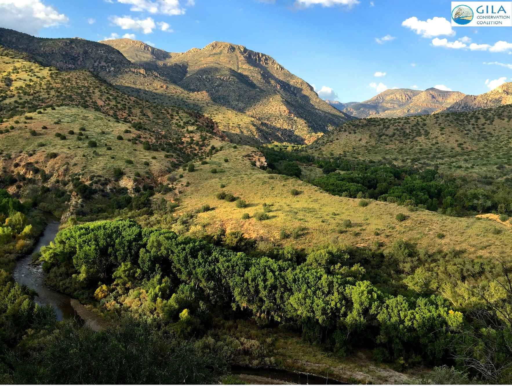 Give to the Gila Conservation Coalition today  image