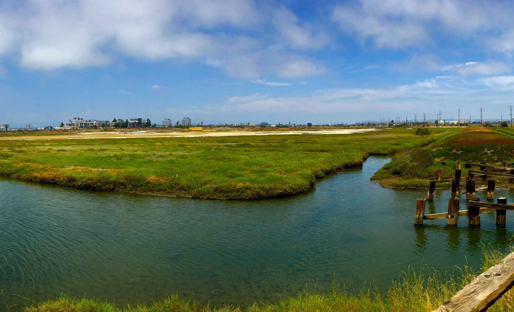 Supporting Friends of Ballona Wetlands image