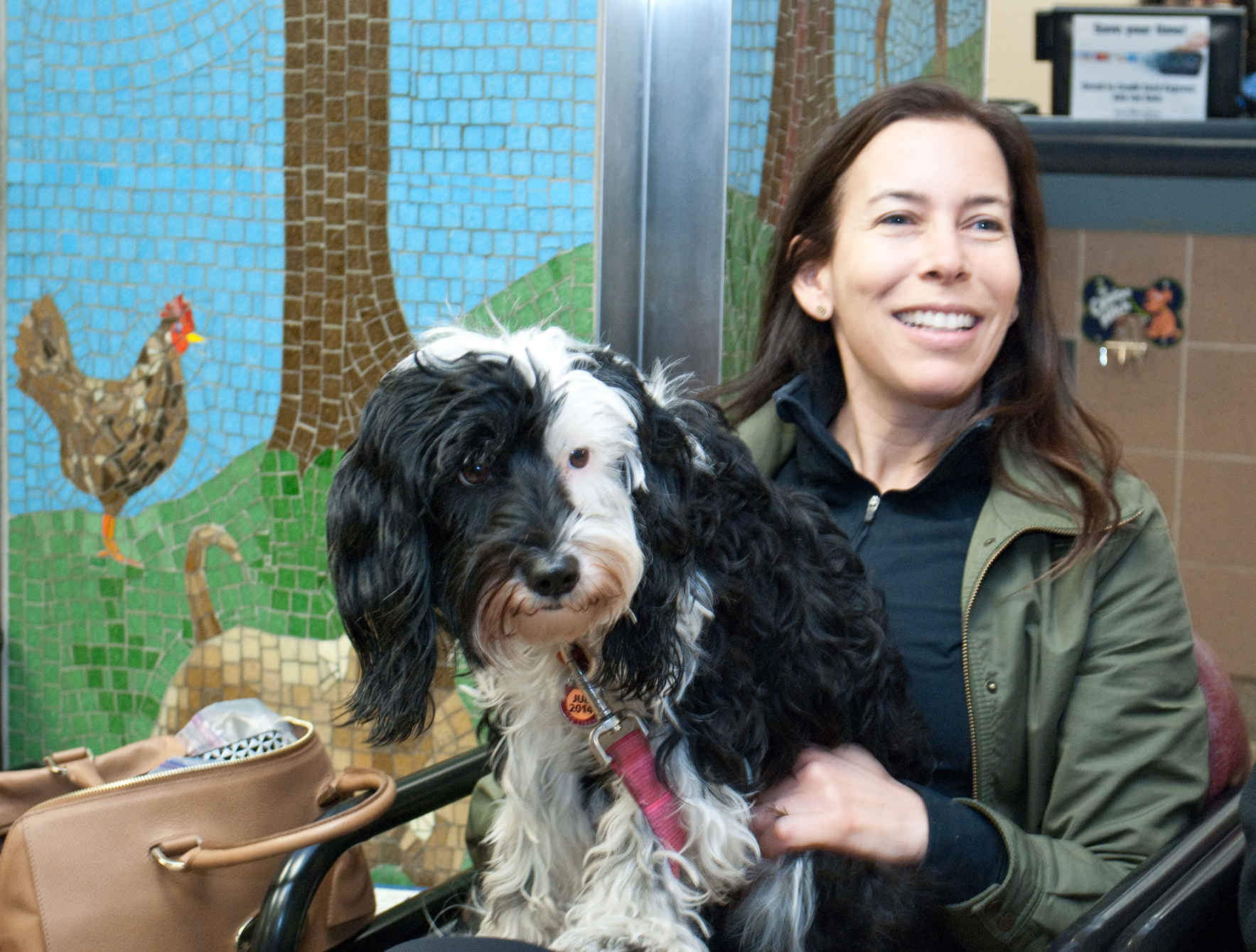 Help empower pet owners through education image
