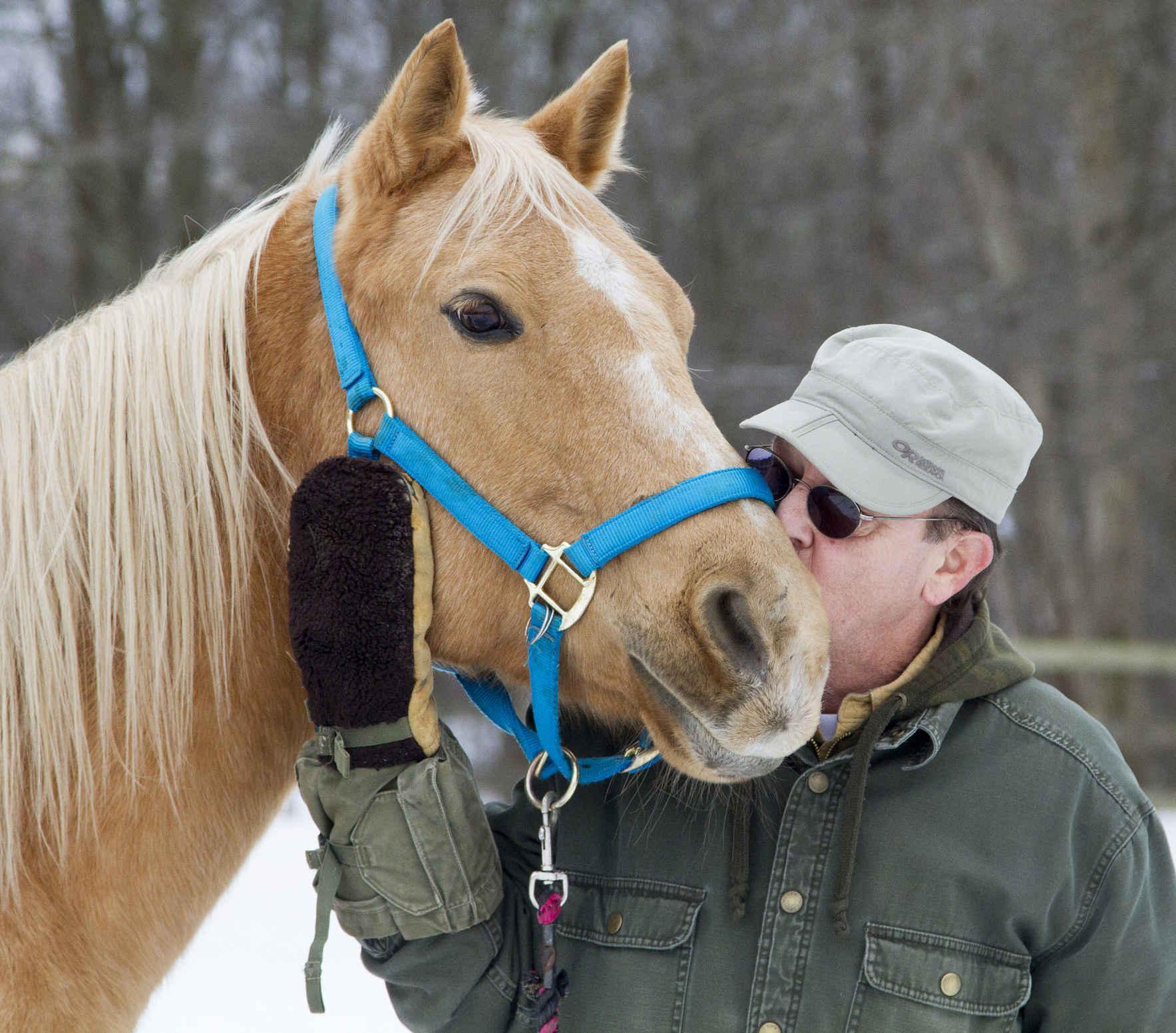 Sponsor a GAIT Horse image