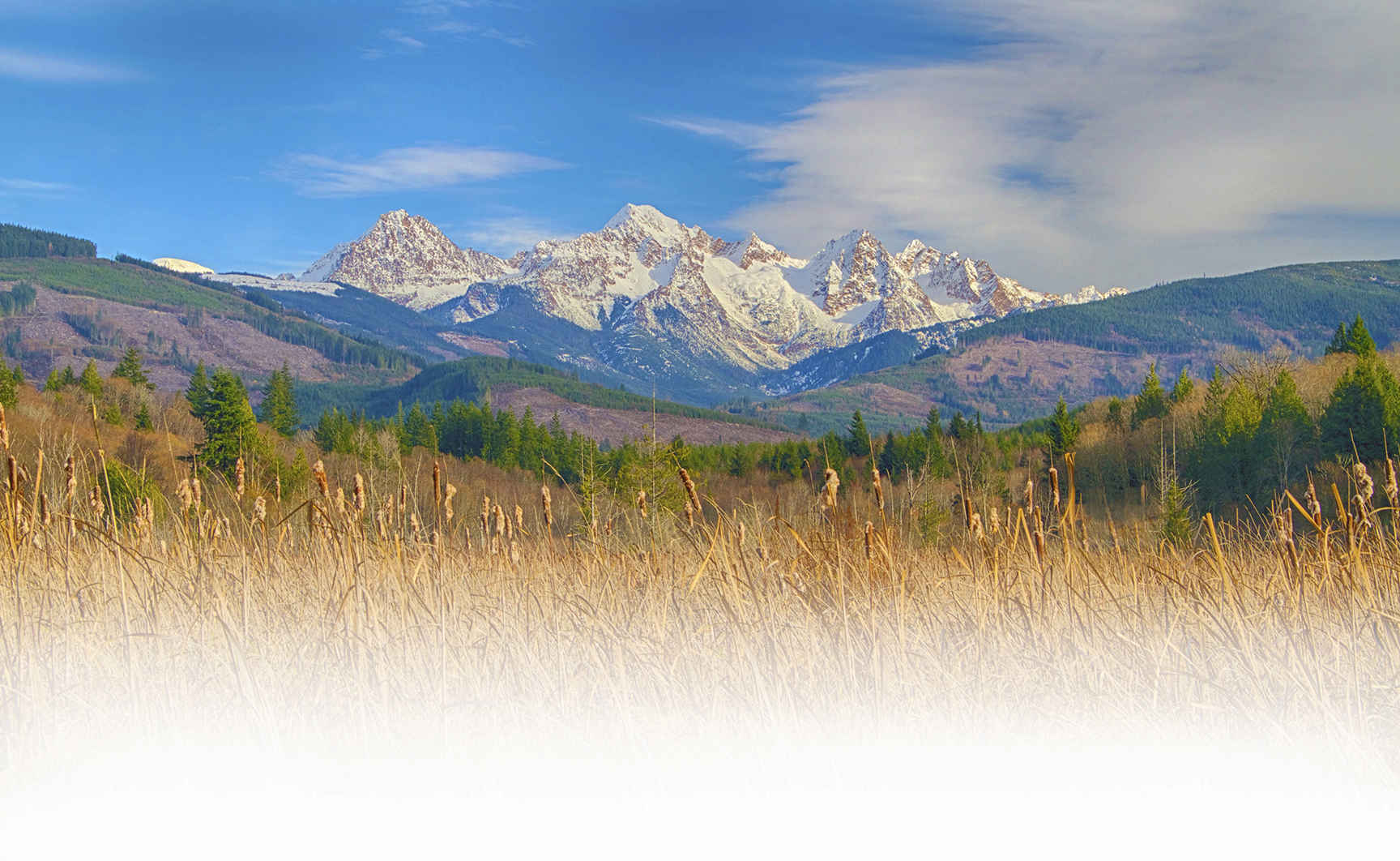 Support Our Resilient Nature and New Land Protections for All image