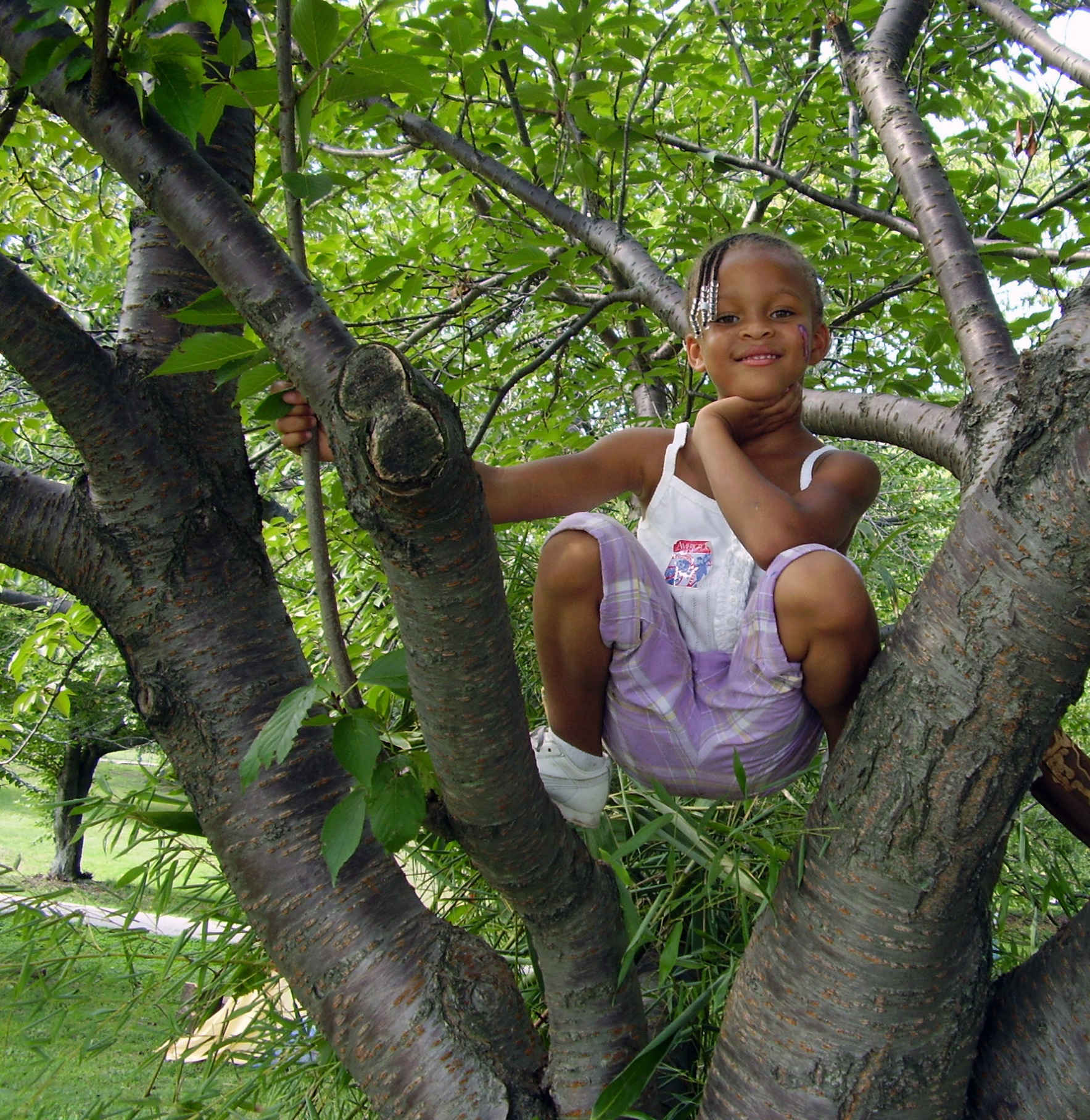 Thank you for making a donation for the future of parks in Baltimore  image