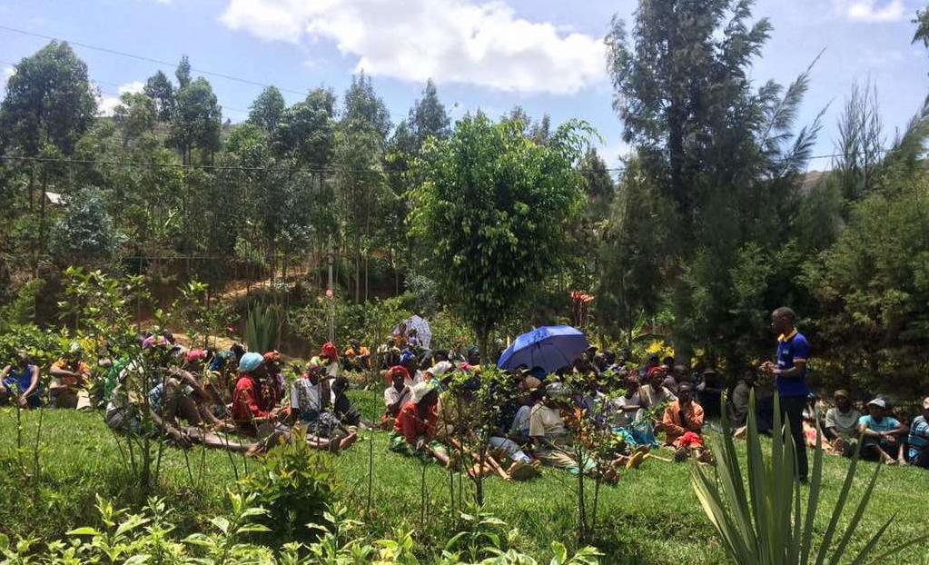 Support Environmental Action in Rwanda image