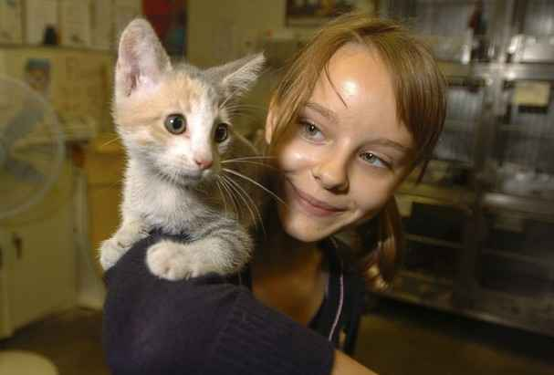 Donate today to help homeless animals in Burlington County image