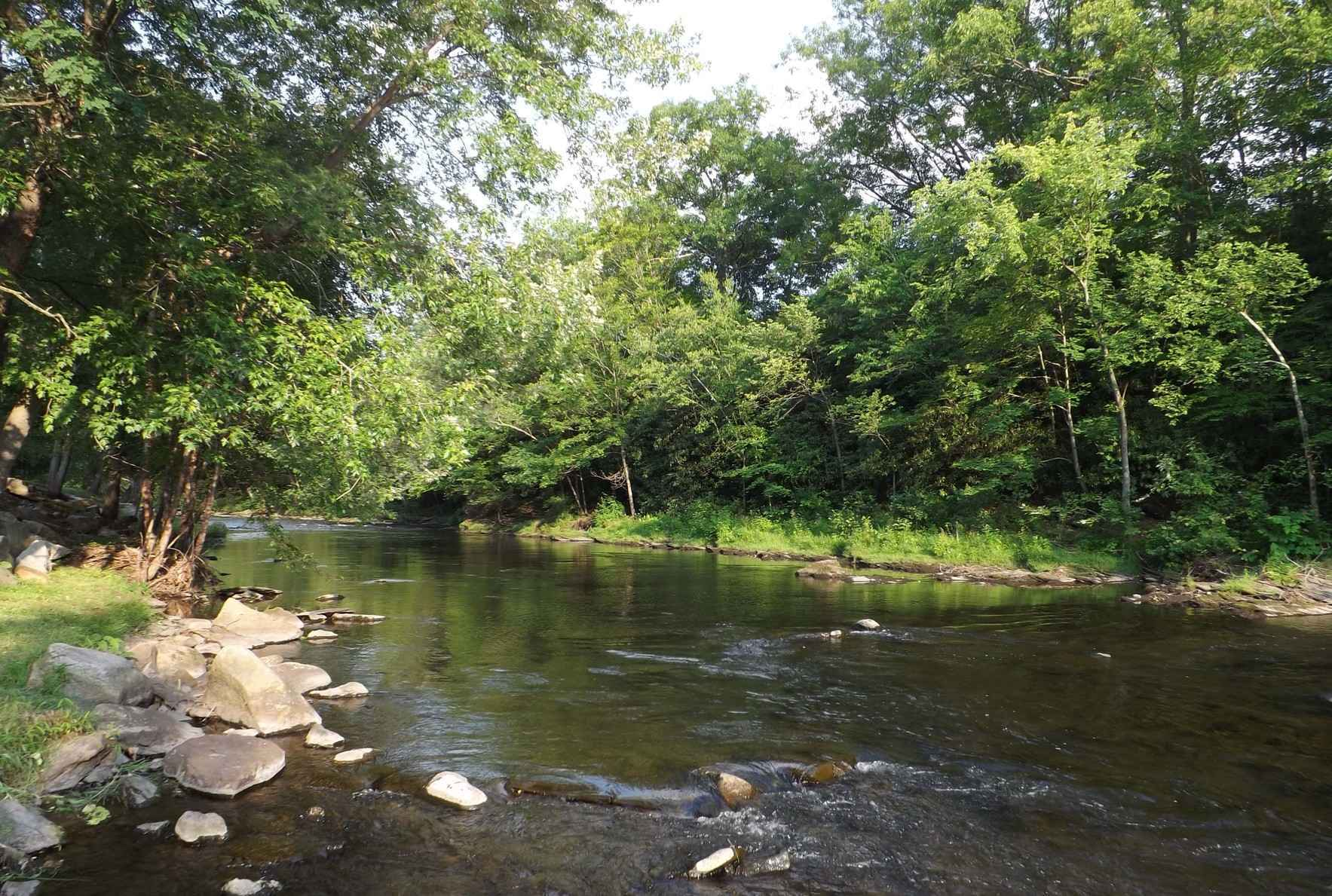 Support the Lackawanna River   Donate Today! image