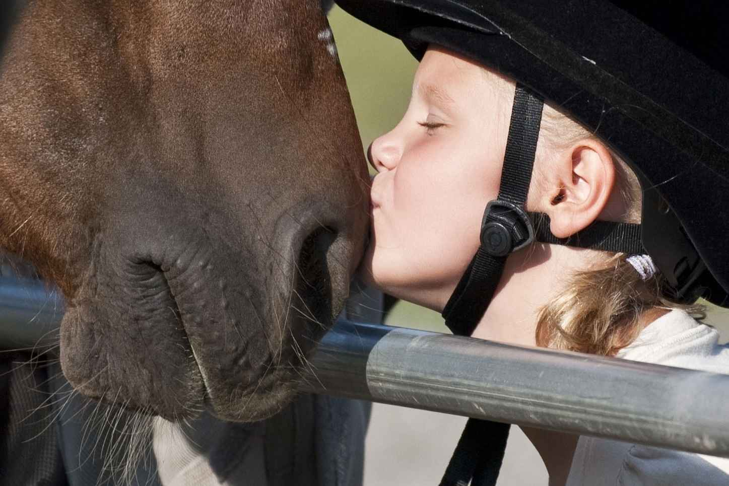 Changes live through the healing power of horses! image