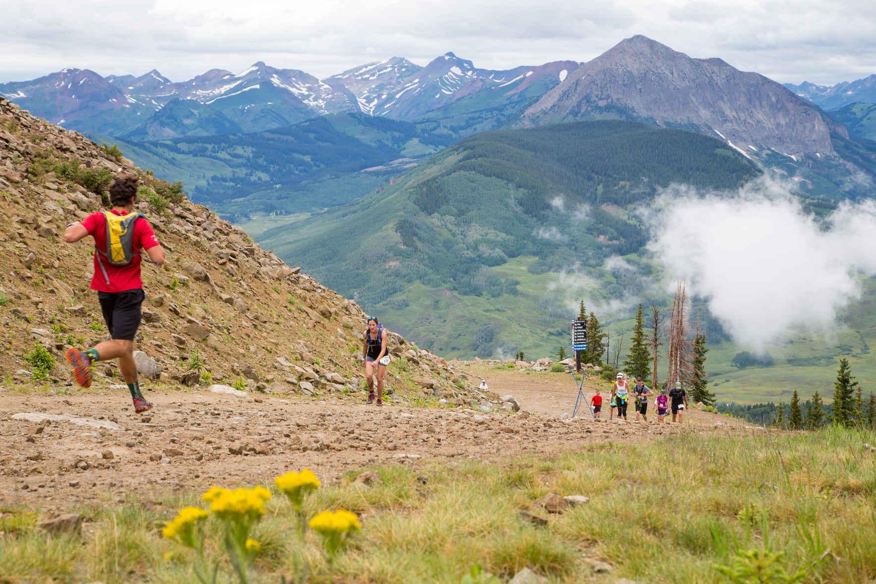 Become a Sponsor of the Living Journeys Half Marathon image