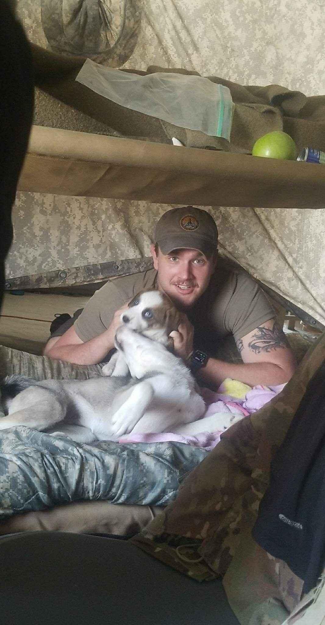 Worn Torn Pups: Operation Saving Mimi! image