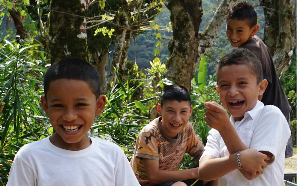 SUPPORT HEALTHY FOOD SYSTEMS FOR FAMILIES IN RURAL HONDURAS image