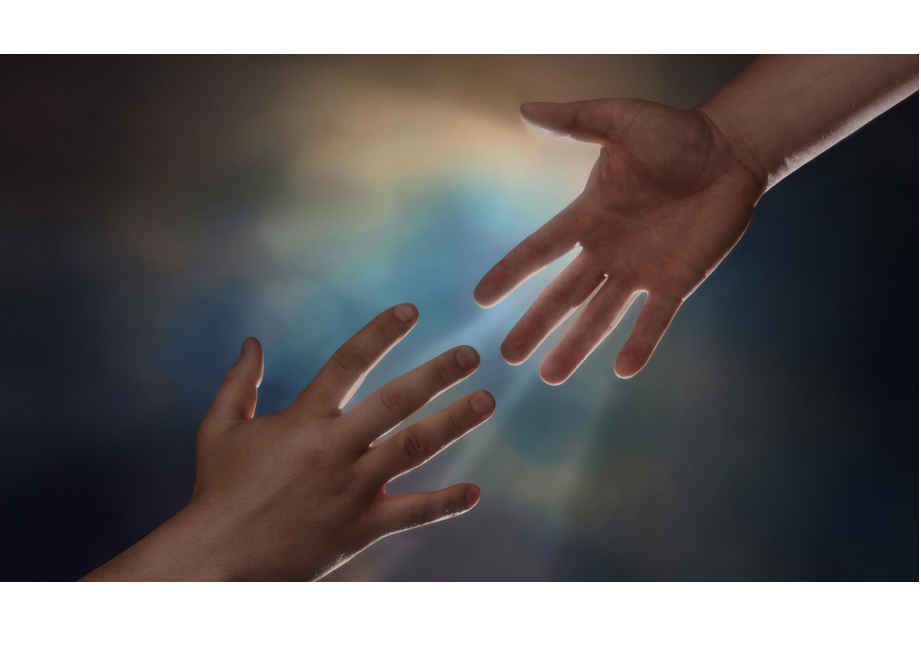 Your giving supports victims' access to resources and information. image