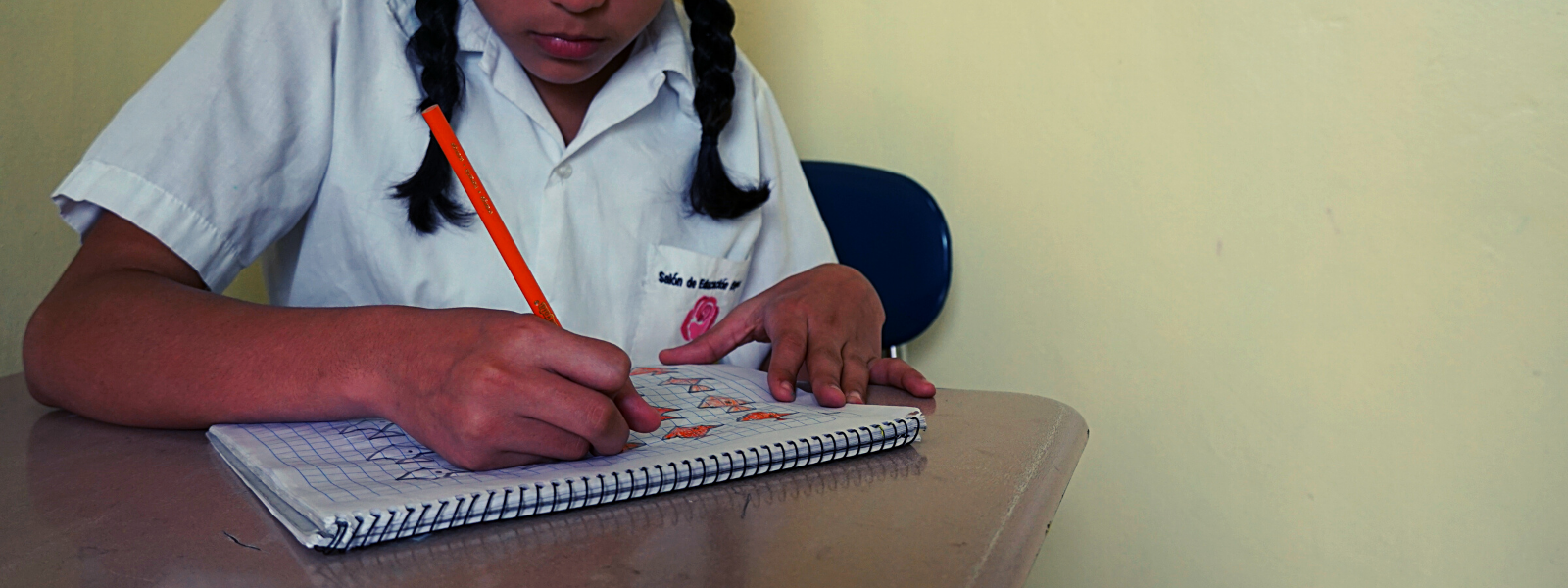 Contribute to these Little Girls' Education with a Donation Today! image