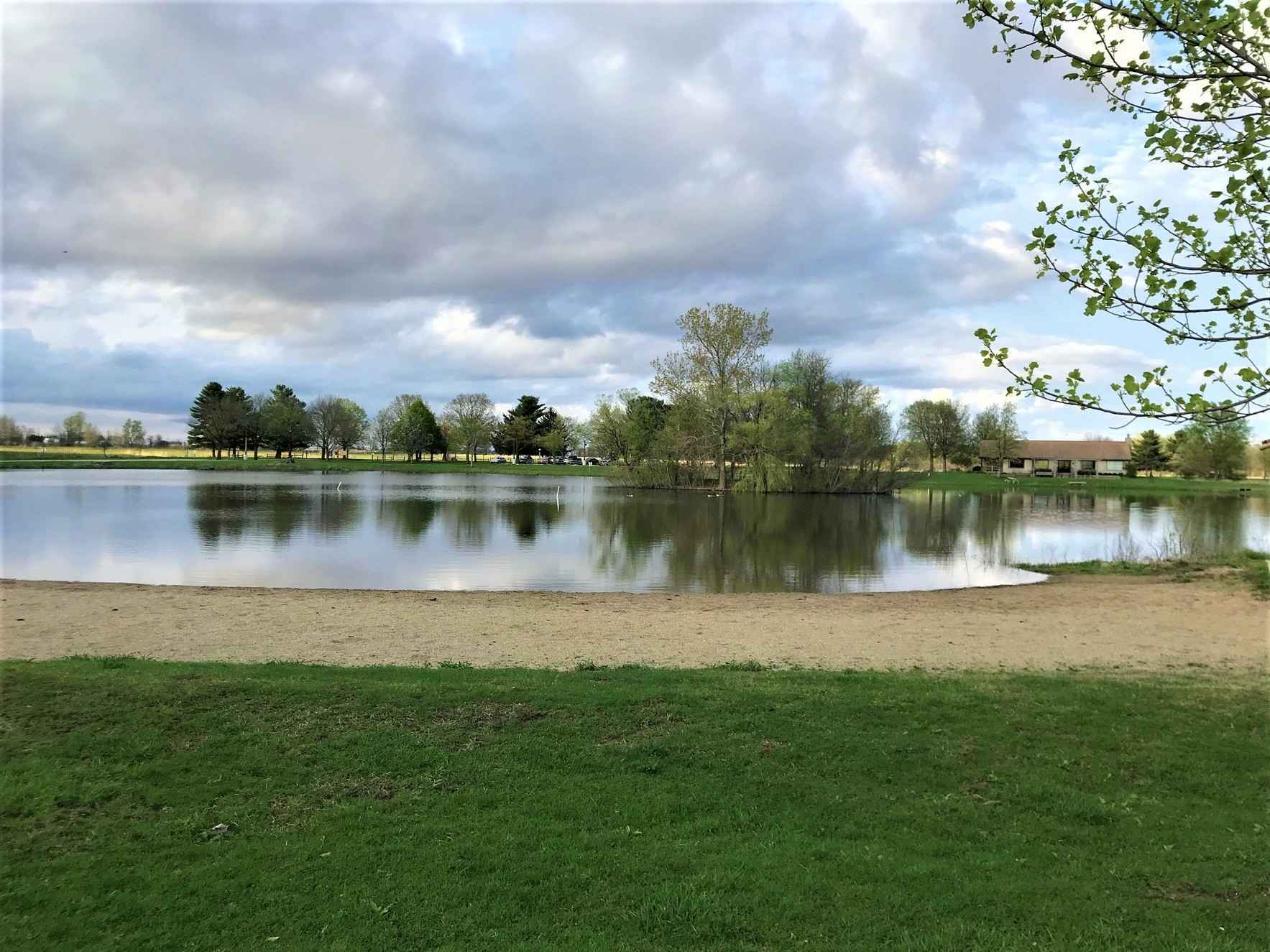 Donate to restore Willow Pond at Middle Fork River Forest Preserve! image