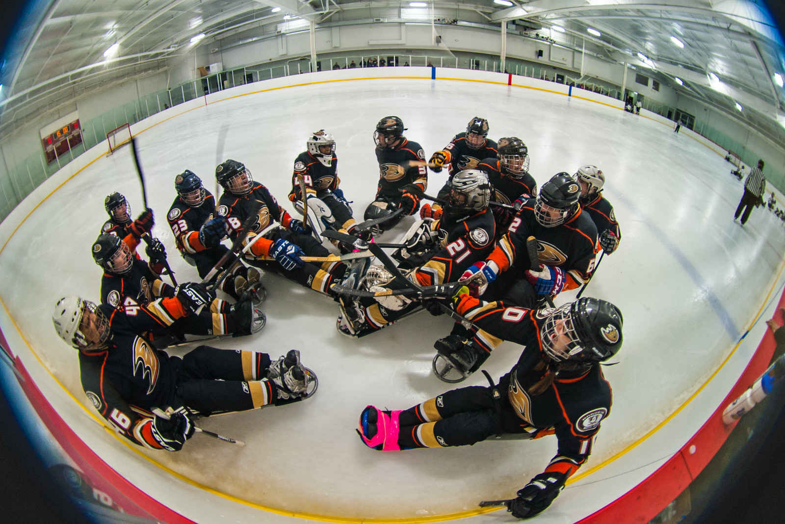Donate to San Diego Ducks Sled Hockey image
