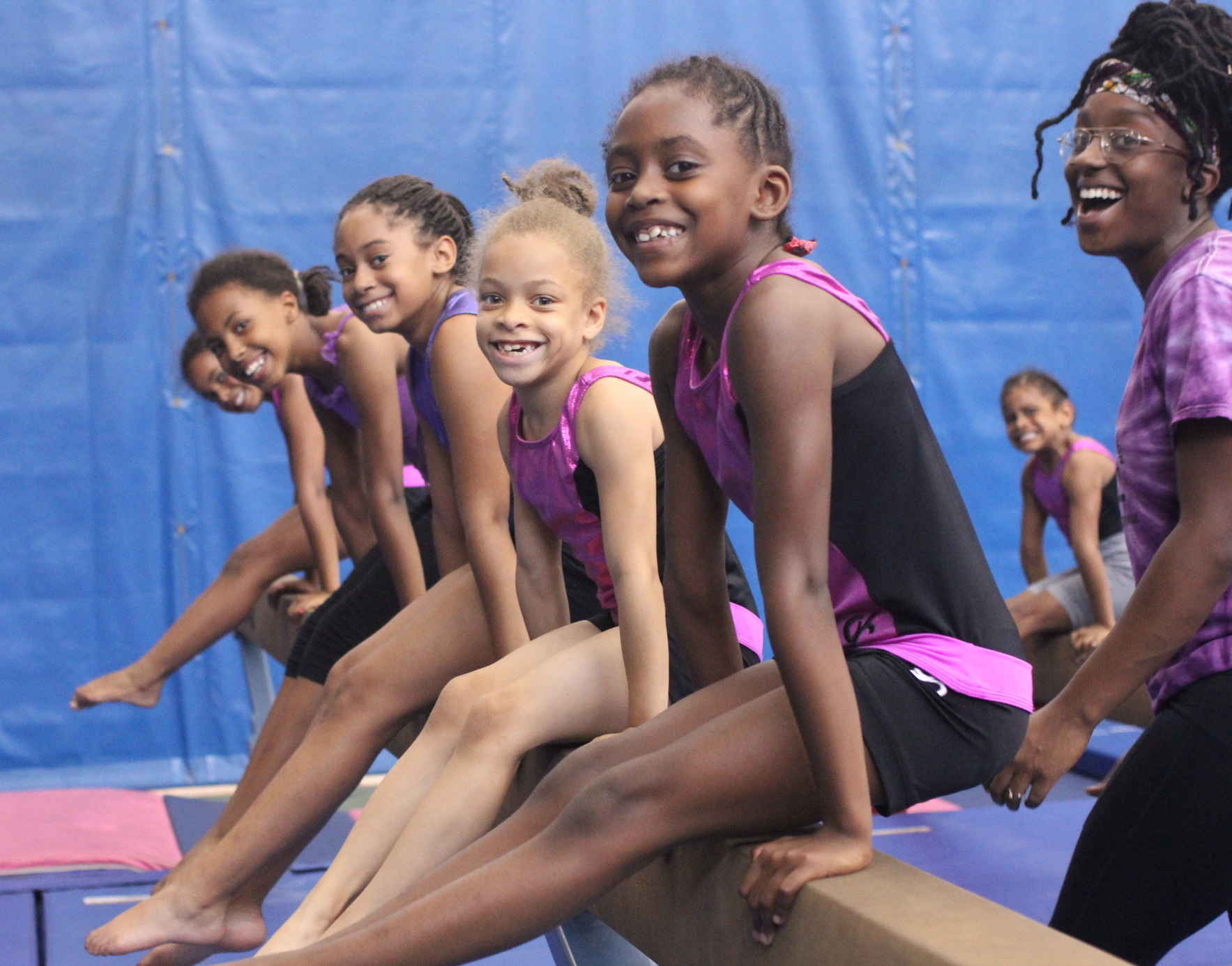 Support the Wendy Hilliard Gymnastics Foundation image