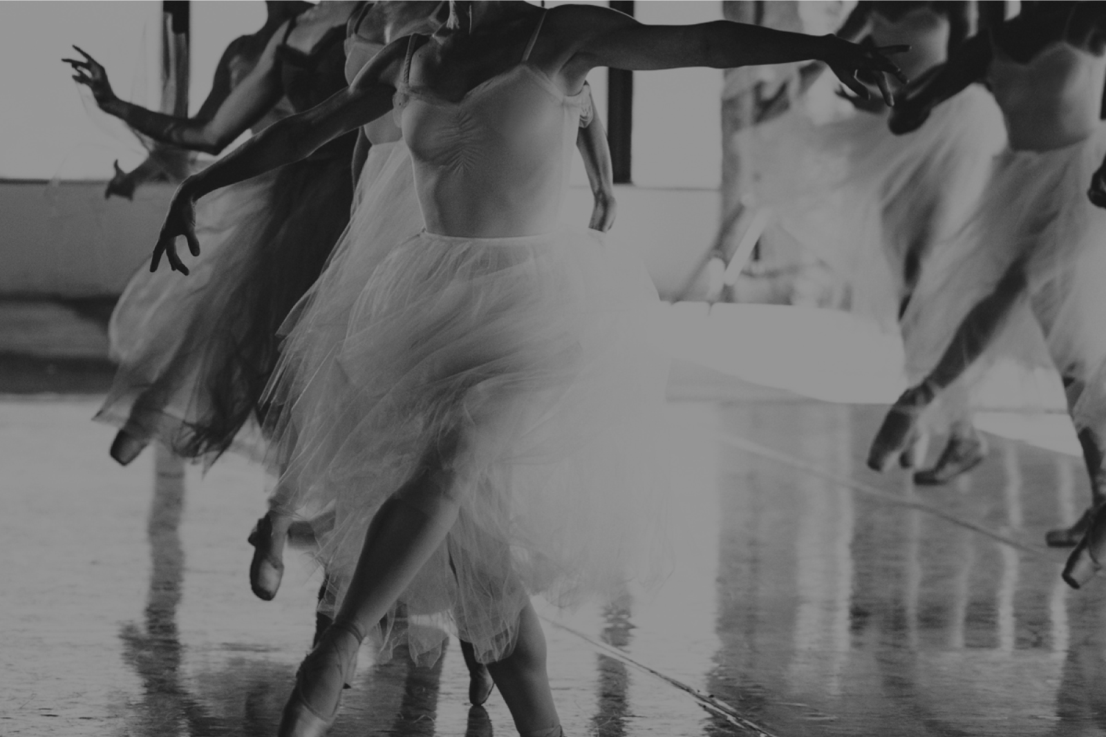 Be part of producing original contemporary classical ballet in Los Angeles image