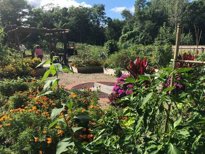 The Mission of the Growing Love Community Garden of Manorhaven is to connect our diverse community to healthy food, nature and each other. image