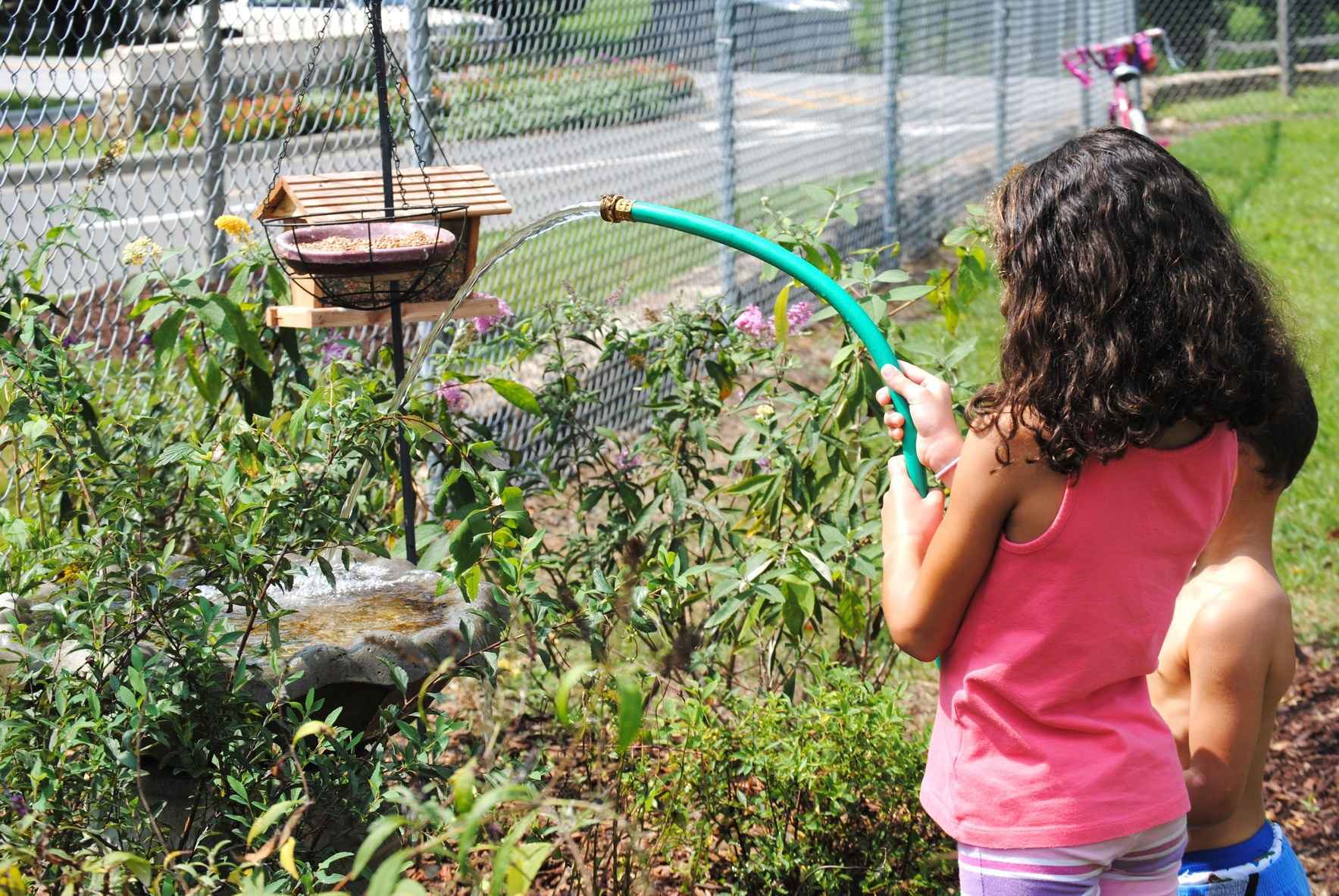 Dedicate a Tree or a Pocket Pollinator Garden in the Name of Someone Special image