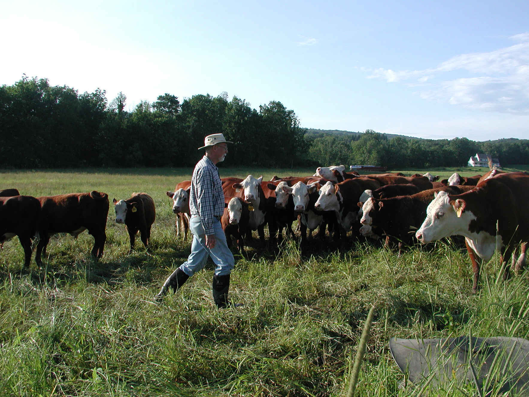 Renew your membership and share your thoughts to keep farming strong in the Rondout Valley! image
