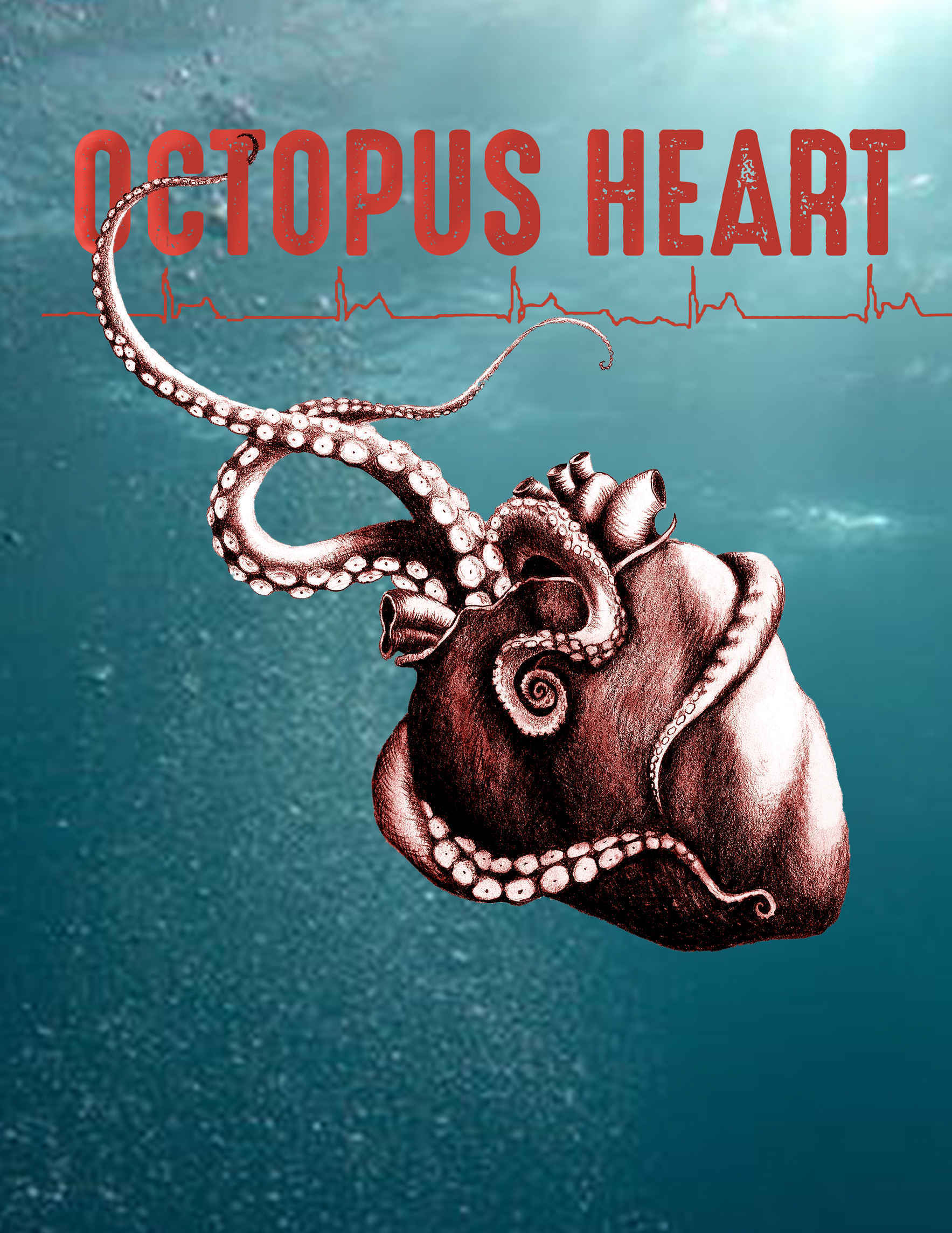 OCTOPUS HEART: an original work of physical theatre, dance and contemporary circus bridging the worlds of art and medicine.  image