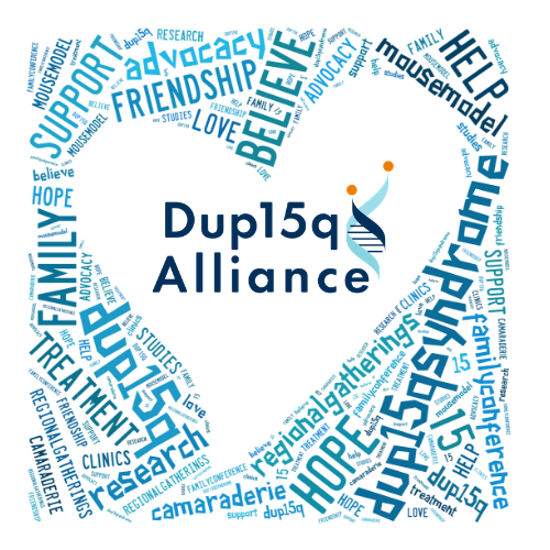 Support the Dup15q Alliance Mission image