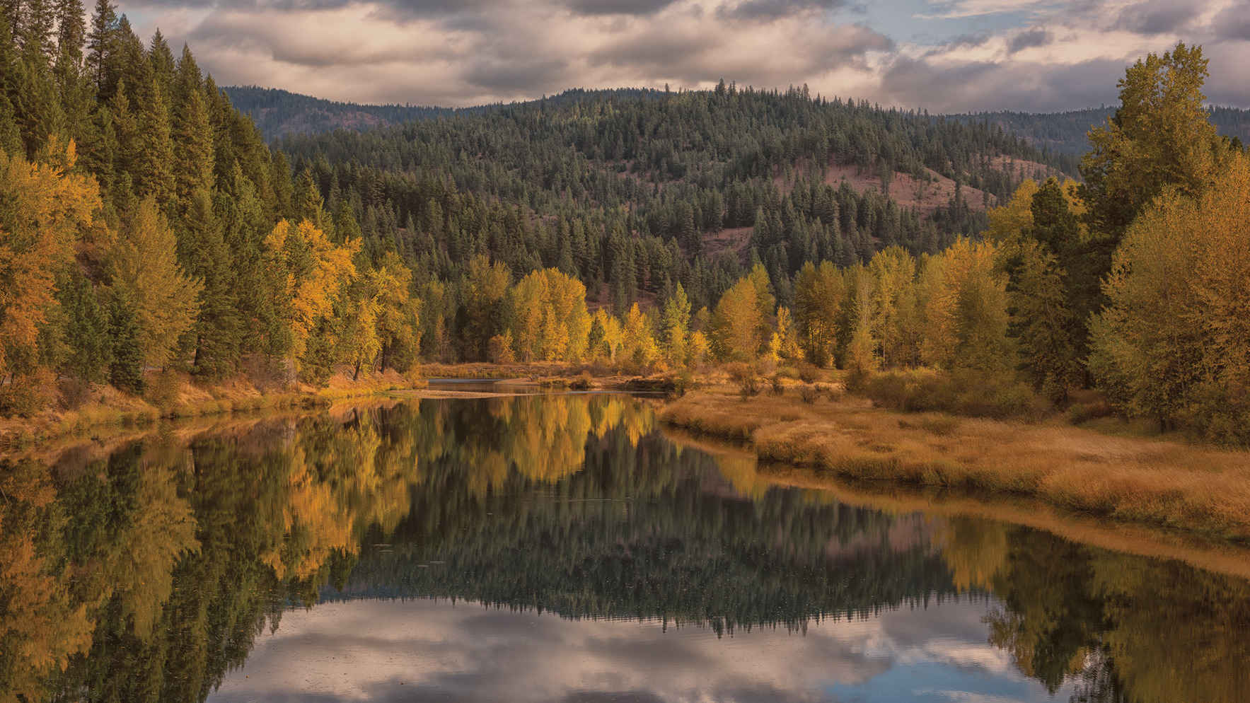 Together, we can make Idaho a beautiful place again for everyone.  image