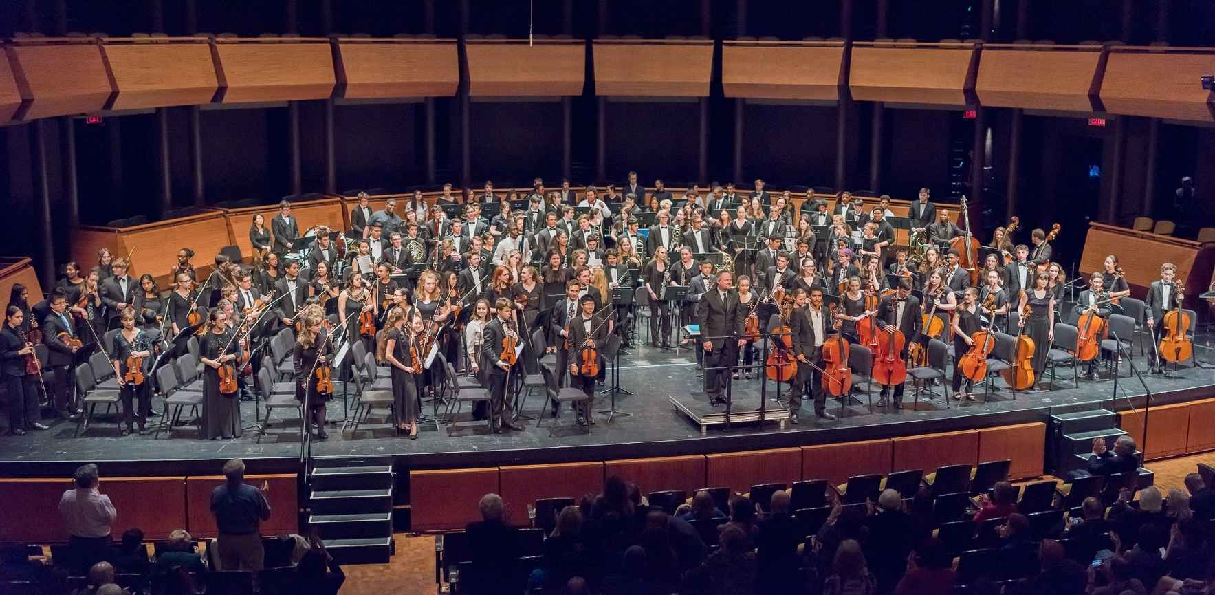 Donate to support InterSchool Orchestras of New York image