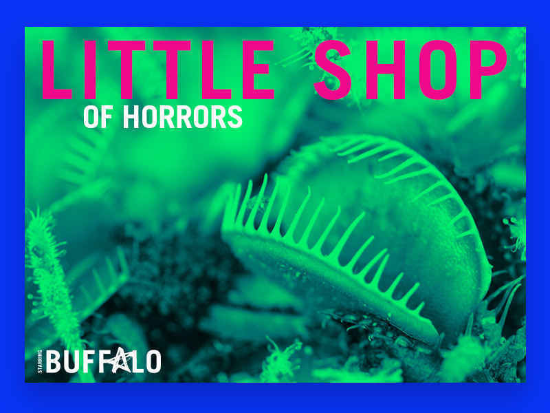 Donate now to support Little Shop of Horrors image