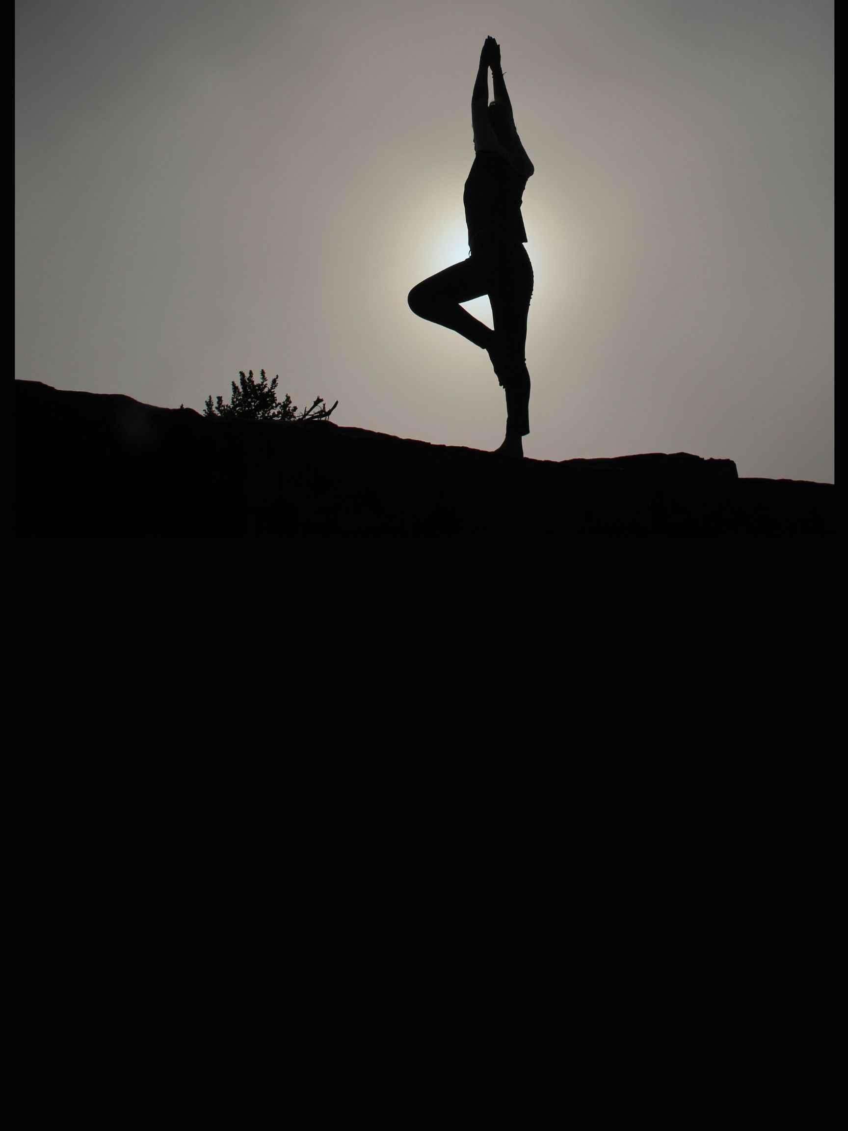 Spring into Wellness image