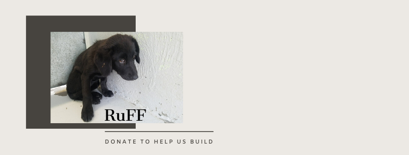 Help us Build our RuFF Program  image