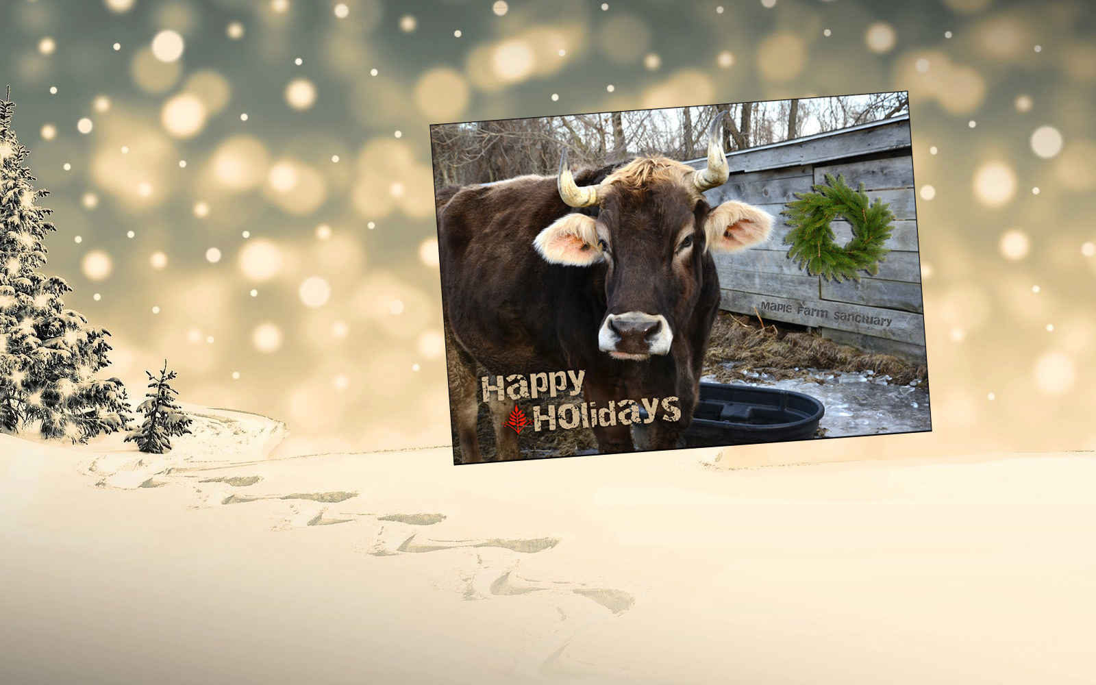 Send a Holiday Card featuring our Rescued Farm Animals image