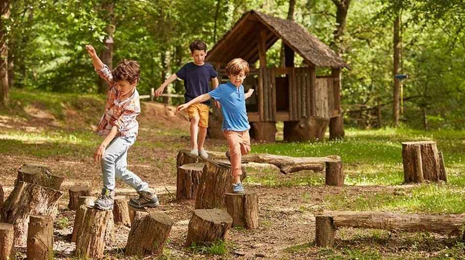 Creating an Outdoor Classroom image