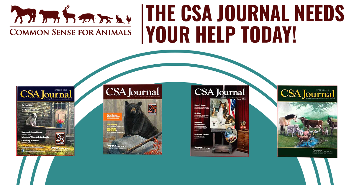 The CSA Journal Needs Your Help image