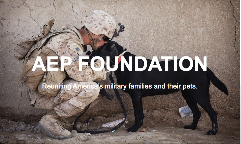 Help Us Reunite Military Families with Their Pets.... image