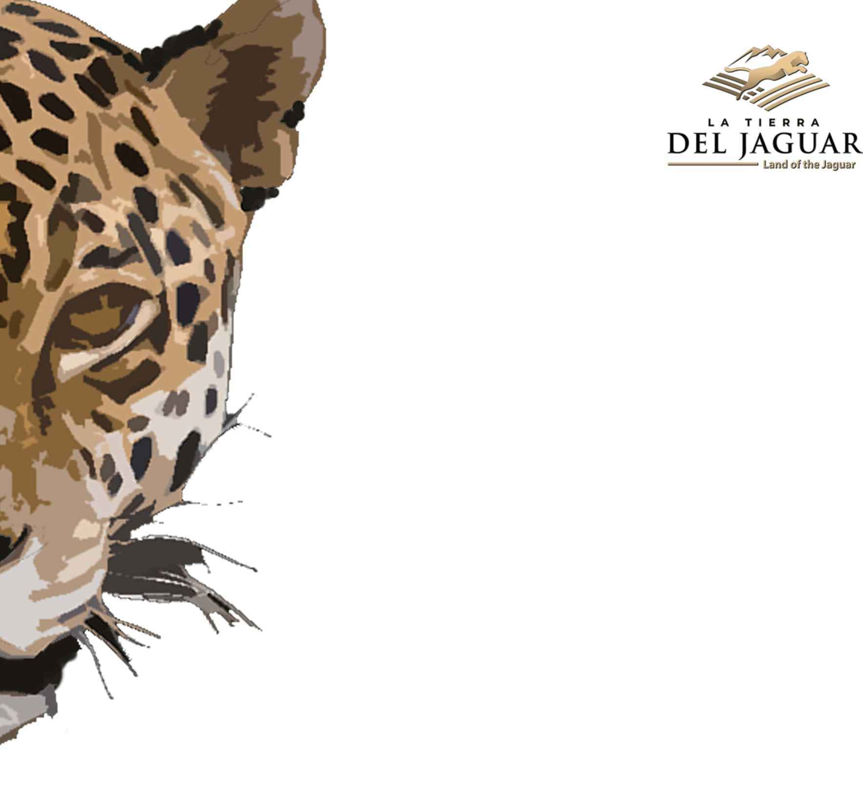 Your Gift will Save the Jaguar, Help the People and Heal the Land image