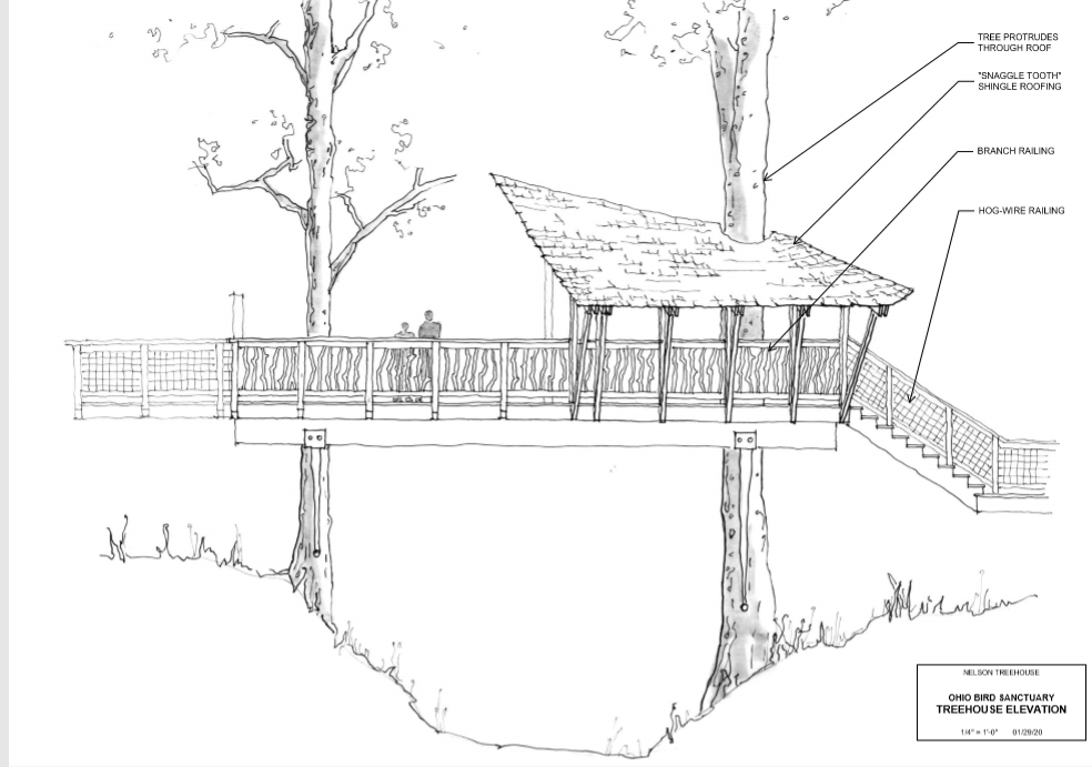 Help the Sanctuary build a Treehouse-classroom image